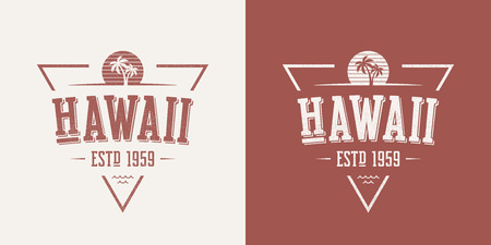 Hawaii state textured vintage vector t-shirt and apparel design,