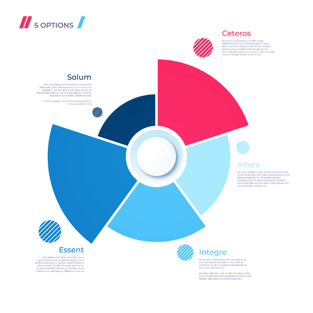 Pie chart concept with 5 parts. Vector template for web, presentations, reports, visualizations