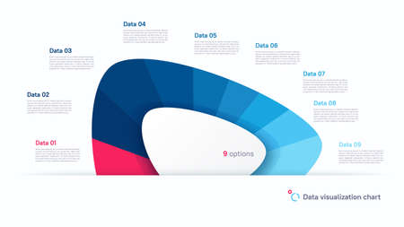 Vector pie chart infographic template in the form of abstract shape divided by nine parts