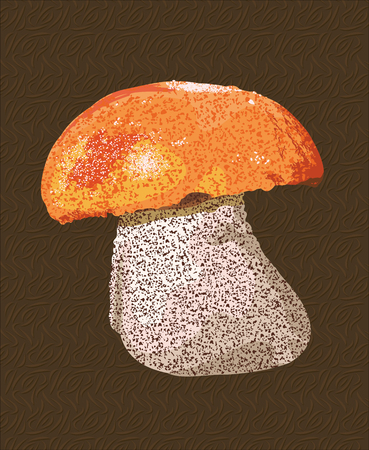 cep: Vector art with detailed mushroom on brown background