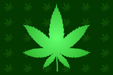 Beautiful background with light green cannabis leaves on dark background