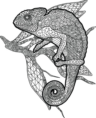 Beautiful detailed adult coloring book page with chameleon on the tree branch  イラスト・ベクター素材