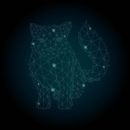 Beautiful starry low poly illustration with shiny cat silhouette on the dark background