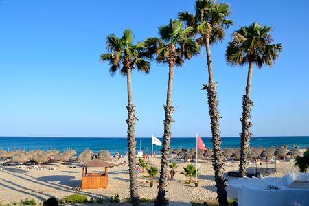 Tunisia beach landscape