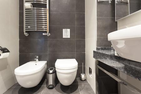 bidet: Bidet and toilet in bathroom