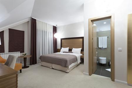 bathroom interior: Bedroom interior with bathroom