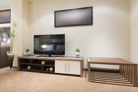 luxury living room: TV set in modern living room