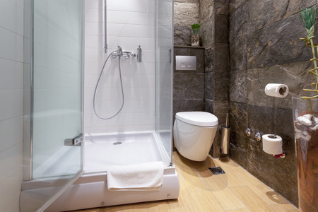 Modern bathroom interior 版權商用圖片 - 36160326