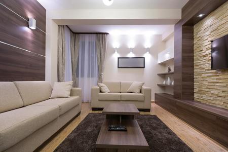 luxury apartment: Modern luxury apartment interior