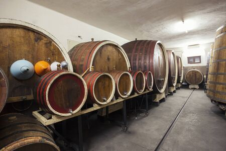 sized: Different sized barrels in a wine cellar