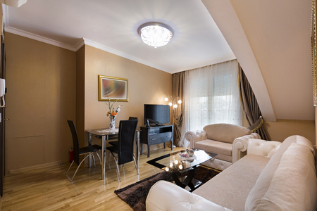 luxury living room: Interior of a luxury apartment living room Stock Photo