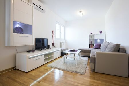 Elegant modern living room interior