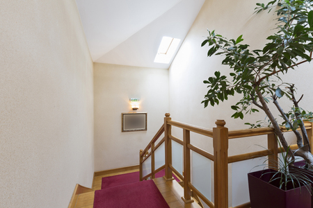 attic: Stairs in the attic apartment