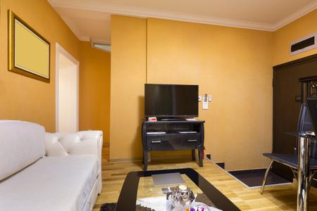 living room interior: Elegant living room interior