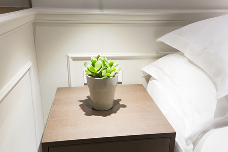 night table: Small plant in flowerpot on a night table next to a bed