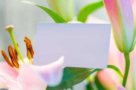 Blank business card in flower bouquet Standard-Bild