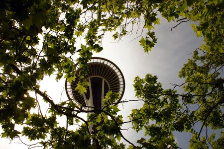 Space Needle and autumn leaves of trees in Seattle, Washington