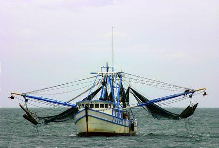 camaron: Camarón barco que regresan de la pesca a Key West Foto de archivo