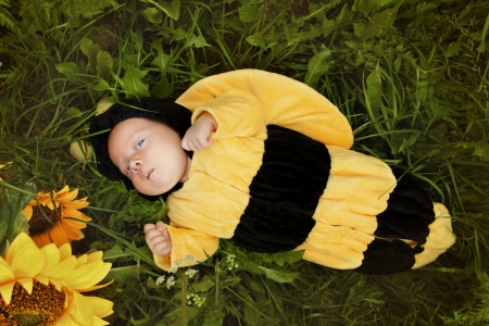 Portrait of newborn dressed as bee