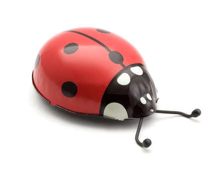 bug key: Ladybug