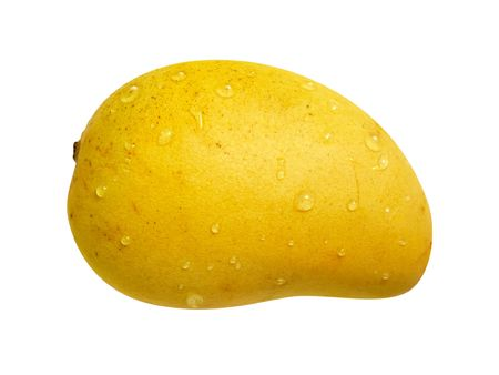 mango isolated: Ataulfo Mango with a path