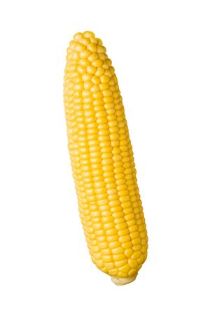 yellow corn: Ear of Corn isolated on a white background Stock Photo
