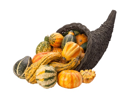 Cornucopia Gourds isolated on white photo