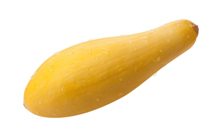 Yellow Squash Isolated with clipping path on a white background Stock Photo - 16834153