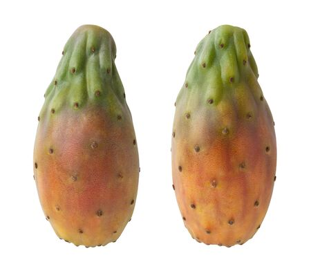 Cactus Pears Isolated with clipping path on a white background Stock Photo - 17514823