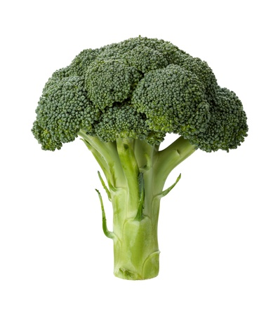 Broccoli isolated on a clean white background