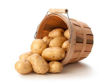 papas: Patatas de oro en una cesta aislada en un fondo blanco.
