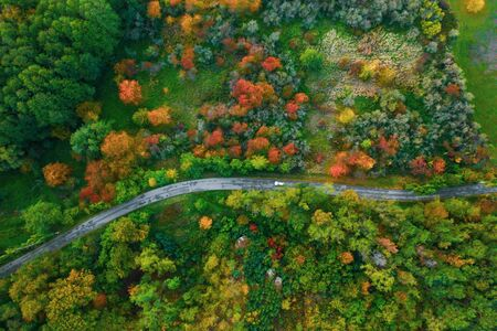 Stunning aerial view of road with cars between colorful autumn forest.