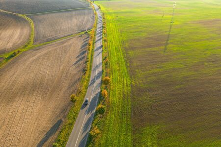 Road between green field and cultivated ground with yellow trees at sunset in autumn. Aerial view on speedway or trees alley. Agriculture concept Reklamní fotografie