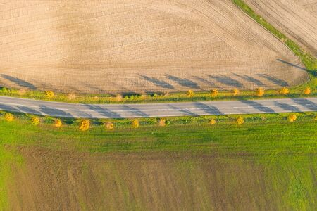 Road between green field and cultivated ground with yellow trees at sunset in autumn. Aerial view on empty asphalt speedway or trees alley