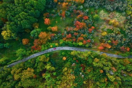 Stunning aerial view of road with cars between colorful autumn forest