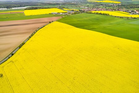 Colorful pattern of yellow rapeseed, green and brown fields, separated by a rural road. Natural and agricultural texture with copy space.