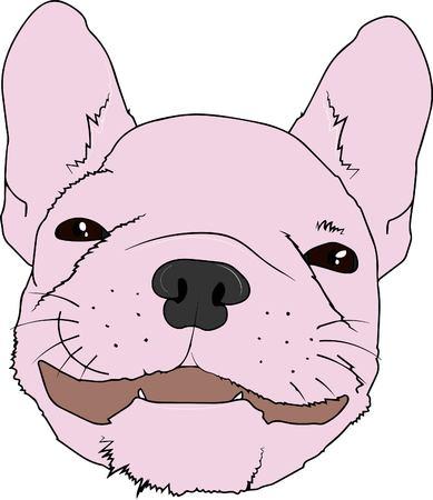 vector illustration. french bulldog