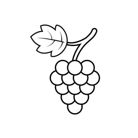 Grape with leaf icon outline vector. Graphic wine dessert symbol. Black grapevine icon on isolated background. Bunch of grape line style. 일러스트