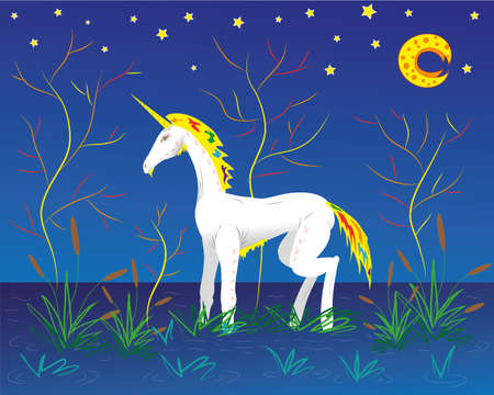 bog: Unicorn goes for a walk on a bog. Illustration. Vector Illustration