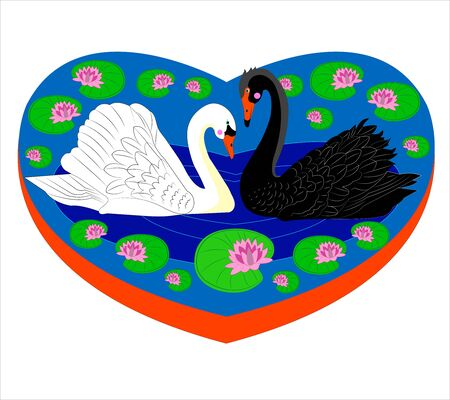 Enamoured swans. Stock Vector - 10823792