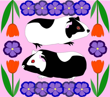 Porpoises with  flowers. Illustration