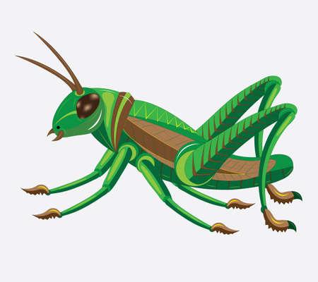 chitin: Green-brown grasshopper. Illustration