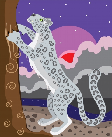 snow leopard: The snow leopard sharpens claws  Illustration