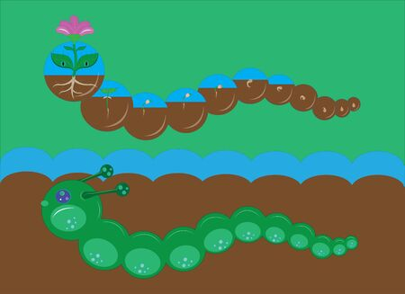 caterpillars: Two caterpillars and stages of development of a flower. Illustration.