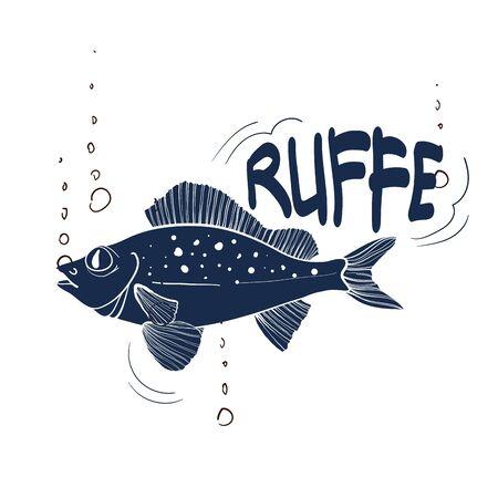 Fishing logo. Ruffe. Fishing vector illustration. Isolated on white.