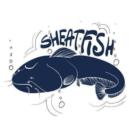 Fishing logo. Sheatfish. Fishing vector illustration. Isolated on white. Illustration