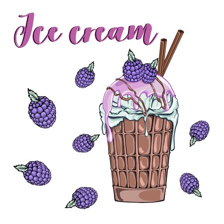 Waffle cup Ice cream with blackberry, cinnamon. Sweet dessert. Isolated white background. Vector illustration.