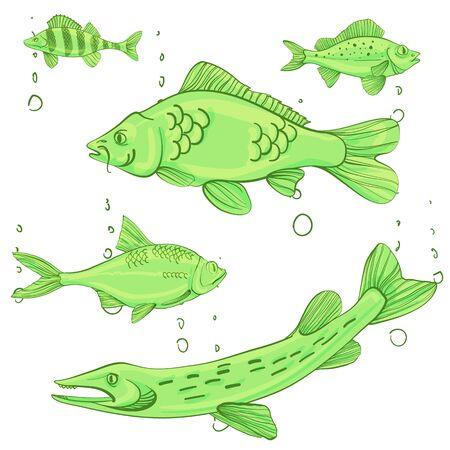 Fishing illustration Vector