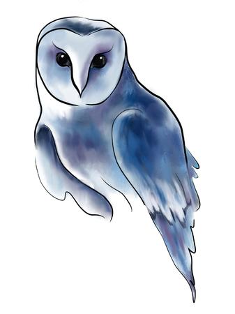 Beautiful, night, wild owl Foto de archivo