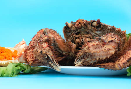 Delicious steamed crab lies on a white plate on a blue background with orange crab caviar and green salad. Close up and selective focus. Home cooking concept.